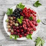 Jagody - malinki, agresty, czerwoni rodzynki, wiśnie, czarni rodzynki na białym talerzu Obrazy Royalty Free