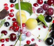 jagody mleko Zdjęcia Stock