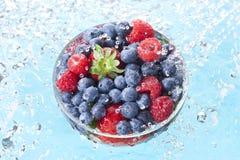 Jagody owoc wody kropel kiść fotografia stock