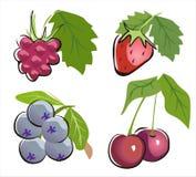 jagody różny ikony set Obrazy Royalty Free