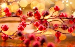 jagody ześrodkowywają bożych narodzeń dof ostrości przodu płyciznę nowy rok, Zdjęcie Stock