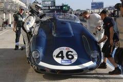 Jaguar à l'arrêt Photos stock