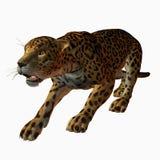 Jaguar ilustração do vetor