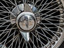 Jaguar-Auto lizenzfreies stockbild