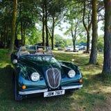 Jaguar bil i skogen royaltyfri bild