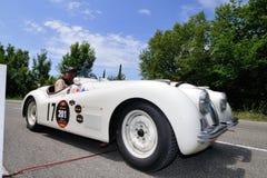 Jaguar blanco XK 120 durante Miglia 1000 Imagen de archivo libre de regalías
