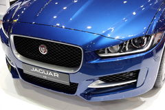 JAGUAR blue Royalty Free Stock Image