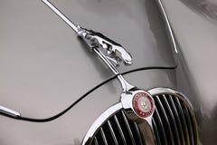Jaguar-Bonnet royalty-vrije stock fotografie