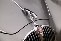 Jaguar Bonnet Royalty Free Stock Photography