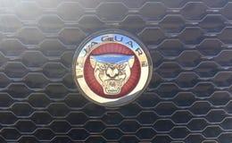 Jaguar Brytyjscy Motorowi samochody Obrazy Royalty Free