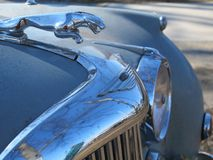 The Jaguar car Royalty Free Stock Photo