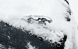 Jaguar car symbol in snow Royalty Free Stock Images