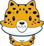 Jaguar Cub de chéri Image stock