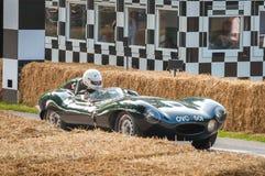 Jaguar D tipo fotografie stock libere da diritti