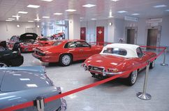 Jaguar de type e et Jaguar XJS images libres de droits