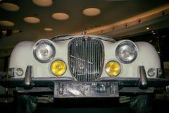 Jaguar de type s photographie stock libre de droits