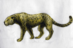 Jaguar - drawing. Jaguar on white paper. Pencil drawn colored sketch Royalty Free Stock Photo
