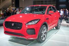 Jaguar-E-Schritt Lizenzfreies Stockbild