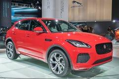Jaguar-e-Tempo stock foto's