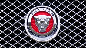 Jaguar Emblem Stock Images