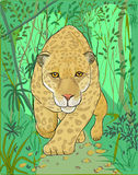 Jaguar en las selvas de América latina stock de ilustración
