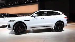 Jaguar F-Pace crossover SUV side view. The F Pace is the first Jaguar in the crossover SUV class and is on display during the 2017 European Motor Show Brussels stock video