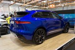 Jaguar-F-Schritt Stockbild