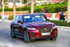 Jaguar-F-Tempo royalty-vrije stock foto