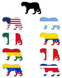 Jaguar flags. Detailed and colorful illustration of jaguar flags Royalty Free Stock Image