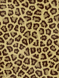 Jaguar Fur. Animal fur good for design backgrounds stock images