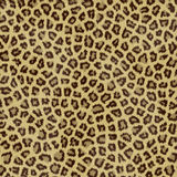 Jaguar Fur. For use as a background Stock Images