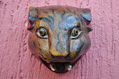 Jaguar głowa rzeźbił w drewnianej dekoraci na różowej ścianie Obraz Stock