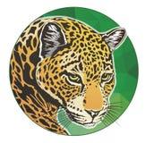 Jaguar głowy okrąg ilustracji