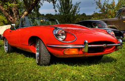 Jaguar HDR Image libre de droits
