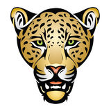 Jaguar head. Vector illustration of jaguar head royalty free illustration