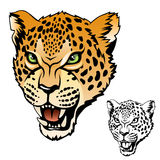 Jaguar head. Stylized jaguar head color illustration Stock Images