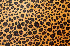 Jaguar hide Royalty Free Stock Photos
