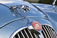 Jaguar hood ornament Royalty Free Stock Photography