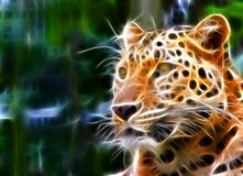 Jaguar illustration. A jaguar illustration in a fractal like render , jaguar's head Royalty Free Stock Images