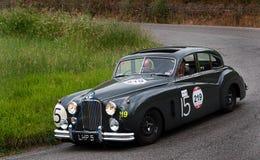 JAGUAR-Kennzeichen VII 1951 Lizenzfreies Stockbild