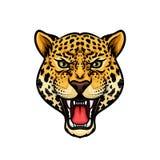 Jaguar kreskówki maskotki głowa odizolowywający projekt ilustracja wektor