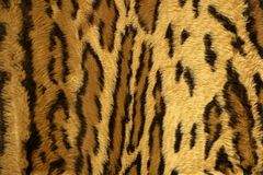 Jaguar leopard fantasy fabric fur texture Stock Image