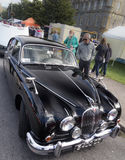 Jaguar Mark 2 Royalty Free Stock Photo