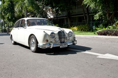 Jaguar Mark II on Vintage Car Parade Royalty Free Stock Image