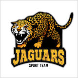 Jaguar mascot - emblem for sport team Stock Images