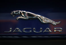 Jaguar metallic logo closeup on the Jaguar  car Royalty Free Stock Image