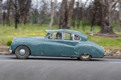 Jaguar Mk VII Sedan som 1953 kör på landsvägen Fotografering för Bildbyråer