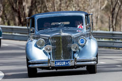 1950 Jaguar MV Drophead Coupe. Adelaide, Australia - September 25, 2016: Vintage 1950 Jaguar MV Drophead Coupe driving on country roads near the town of Birdwood Royalty Free Stock Photo