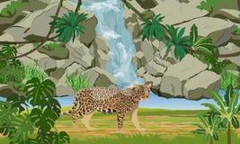 Jaguar nära den tropiska vattenfallet och den stora sjön Jaguar i djungeln stock illustrationer