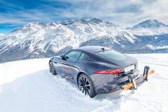 Jaguar nella neve Immagine Stock Libera da Diritti